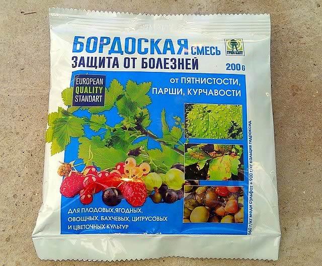 Готовая бордоская смесь для защиты винограда