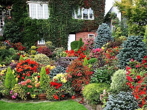 Ландшафтный дизайн дачного участка, сад у дома, фото