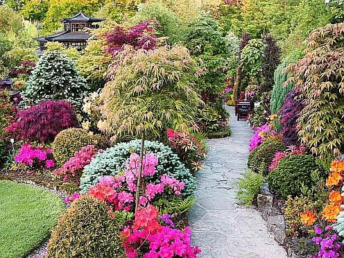 Ландшафтный дизайн дачного участка, дорожки в саду, фото