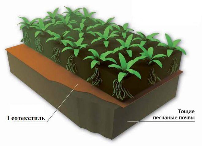 Геотекстиль служит для предотвращения вымывания и загрязнения плодородных почв.