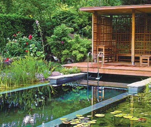Новое в садовом дизайне — ландшафтные бассейны или водоемы.