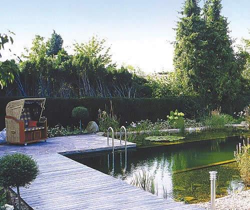 Как устроен ландшафтный бассейн