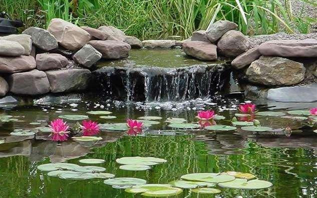 строительство пруда своими руками - делаем ручей