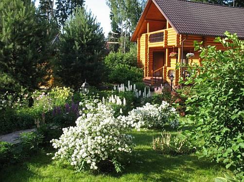 ландшафтный дизайн, сочетание растений в саду