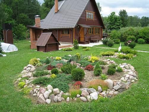Декоративные посадки. фото цветника