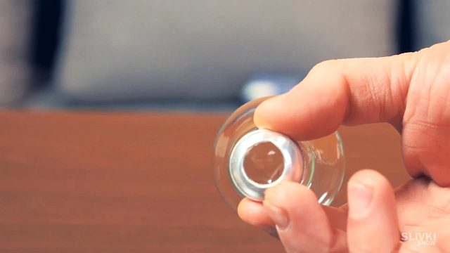 фото террариум из лампочки своими руками