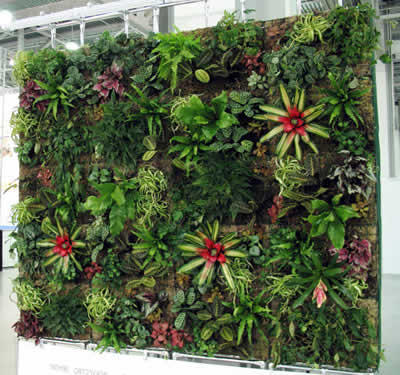 Конструкции для вертикального озеленения - фото