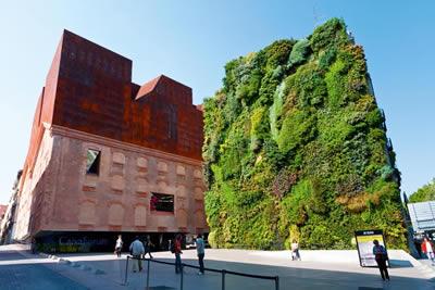 вертикальное озеленение стен фото