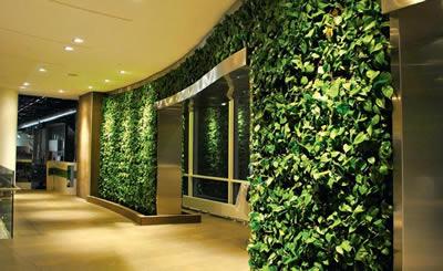 озеленение внутренних стен зданий - фото