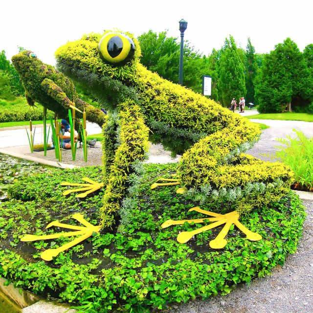 ландшафтная 3D основа под озеленения хмелем