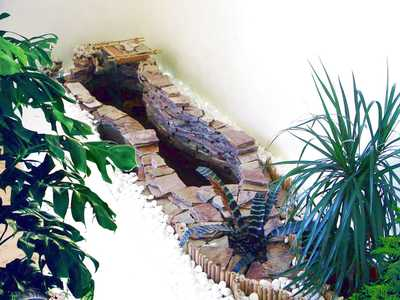устройство мини-водоёма в зимнем саду в квартире - фото